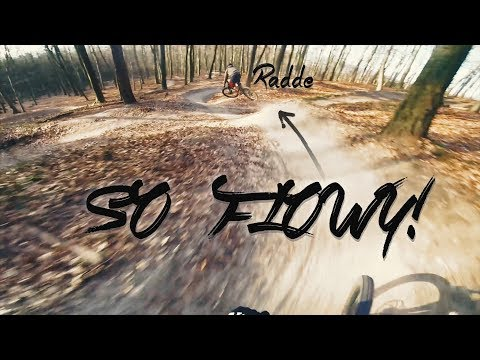 Golden hours in cold forest - GoPro flow Edit