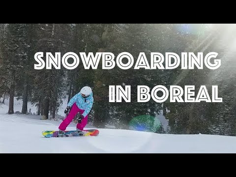 Boreal Overview 2018