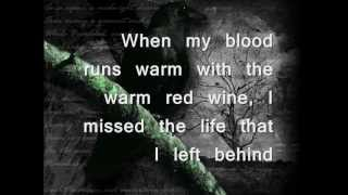The Longer I Run- Peter Bradley Adams (Lyrics)