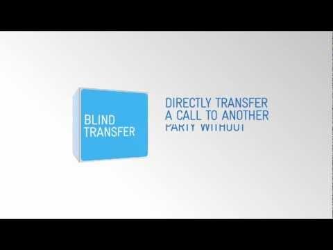 Digital Business -- How to set up Call Transfer