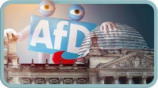Was Die Afd Bisher Im Bundestag Geleistet Hat