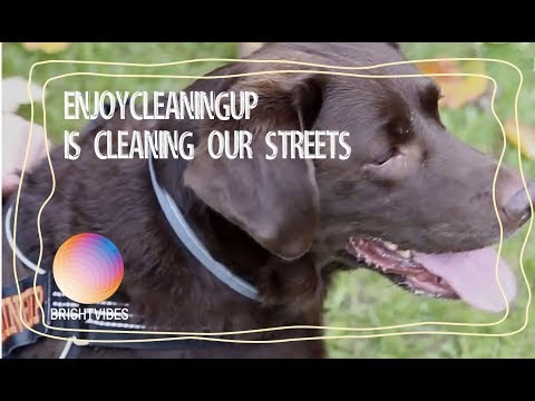 This dog picks up plastic litter in our streets