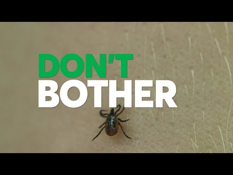 Don't Bother Using These Tick Removal Methods | Consumer Reports