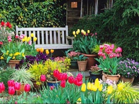 Creating a Garden With a Terrace
