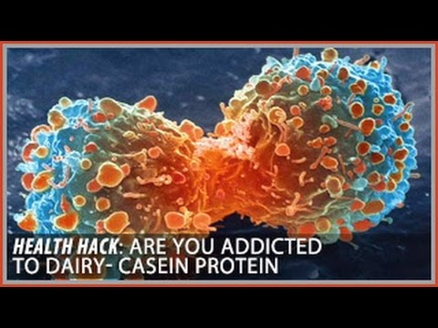 Are you Addicted to Dairy? | Casein Protein: Health Hacks- Thomas DeLauer