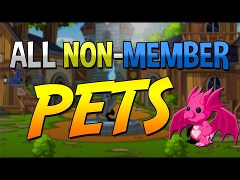 FREE PETS - ALL NON-MEMBER - NOT RARE PETS - AQW 2016
