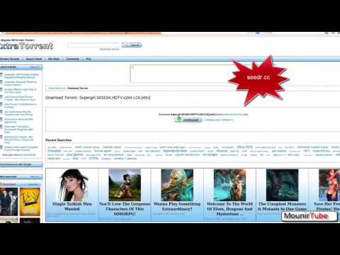 Download Torrents with seedr cc seed online without uTorrent