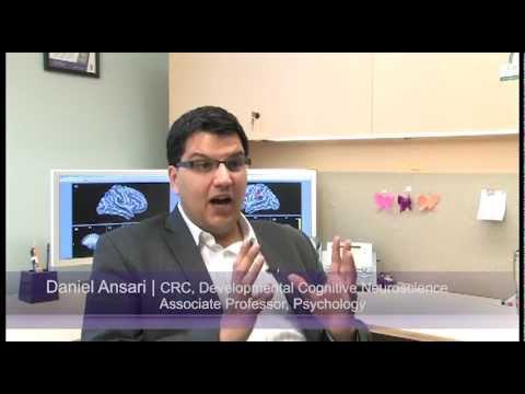 Western neuroscience study reveals new link between basic math skills and PSAT success