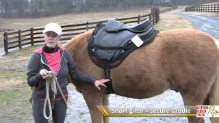 Girth Size For Treeless Saddles