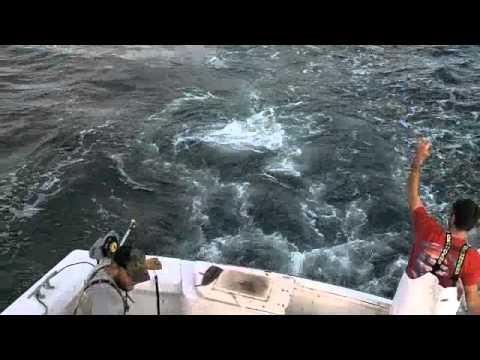 Godspeed commercial king mackerel fishing 11/14/2011