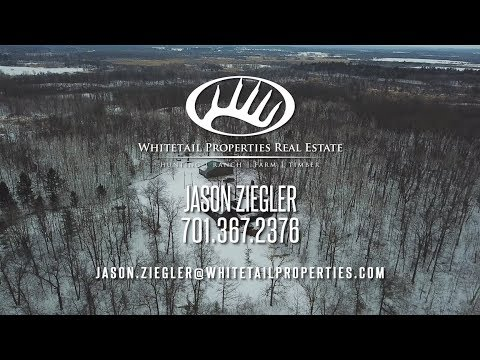 Hunting Property In Zone 214 With Custom-Built Log Home - Todd MN 80 acres