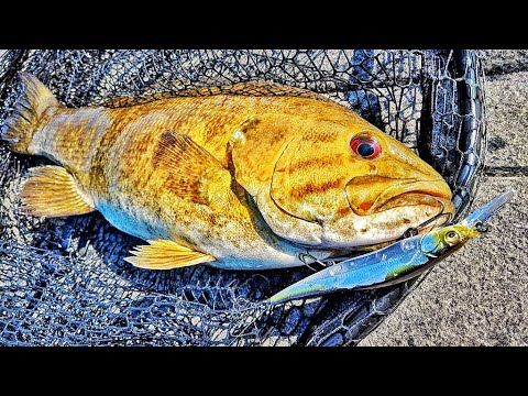 TWO Smallmouth at the Same Time!  Best Double Ever?!?  SEEKING BRONZE #9