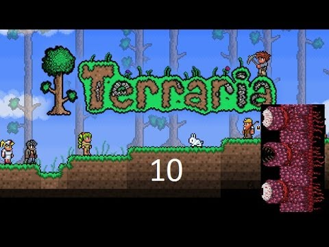 Dgc speelt Terraria - Road to Hallowed armour #10 Wall of flesh
