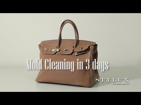 Mold Cleaning in 3 days - STYLUX