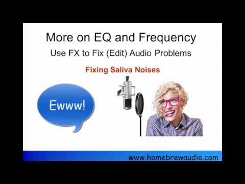 Removing Saliva Noise From Voice Recordings