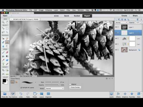 From Raw to Wow! Black and White conversion using Photoshop Elements 13