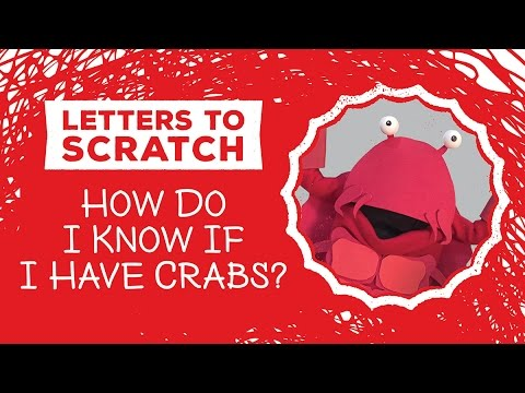 CRABS! - Letters To Scratch - How do I know if I have Crabs?
