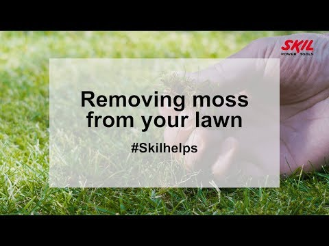 Removing moss from your lawn