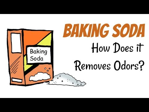 How To Remove Odors Using Baking Soda | DIY