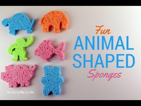 Fun Animal Shaped Sponges Tutorial