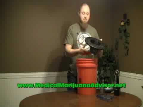Cheap Deep Water Culture Hydroponic System