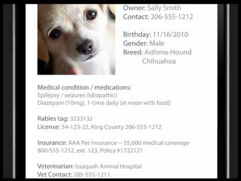 QR Code Pet Tags & Collars