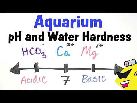 Aquarium pH and Water Hardness