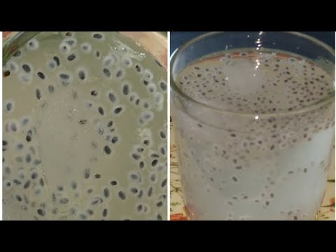 How to make a lemonade recipe for hindi and urdu,lemon juice with chia seeds, iftar recipe, drink r