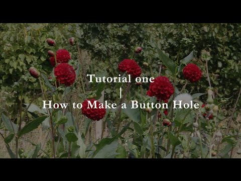 Common Farm Flowers - Tutorial 1 - How to make a Button Hole