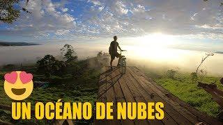 Canopy Entre Las Nubes | Logan Y Logan