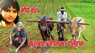 Download कुशवाहा जाति का इतिहास क्यों कहा जाता है मौर्यवंशी kushwaha jati ka etihas Video