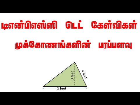 Area of various Triangles | In Tamil