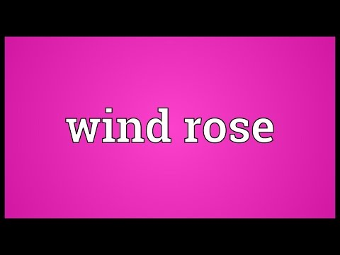 Wind rose Meaning