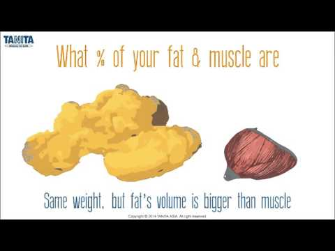 Understanding BMI, Weight & Body Composition