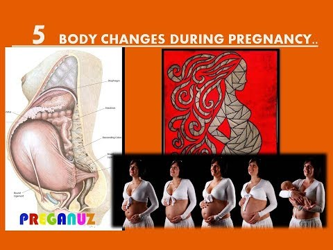 5 BODY CHANGES DURING PREGNANCY..