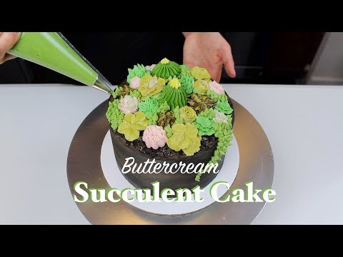 How to Make A Succulent Cake | CHELSWEETS
