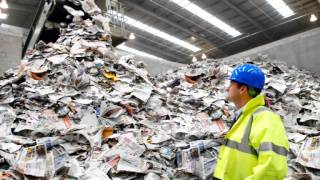 What happens to your recycled Plastic, Paper, Tins and Cans ?