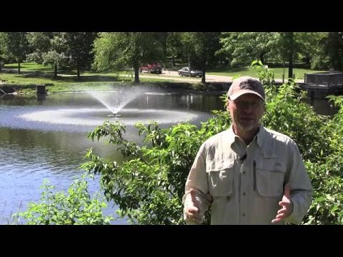 Why Use A Pond Fountain For Aeration?