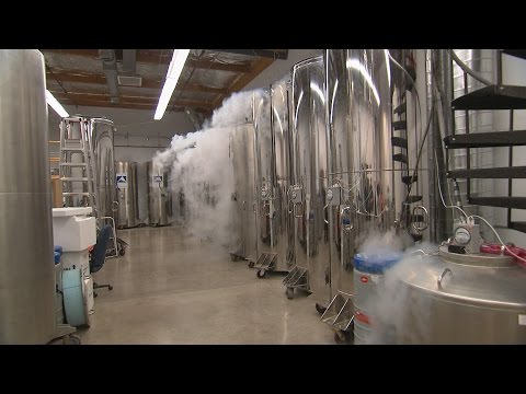 Father fears his cryogenically FROZEN child will be alone in America