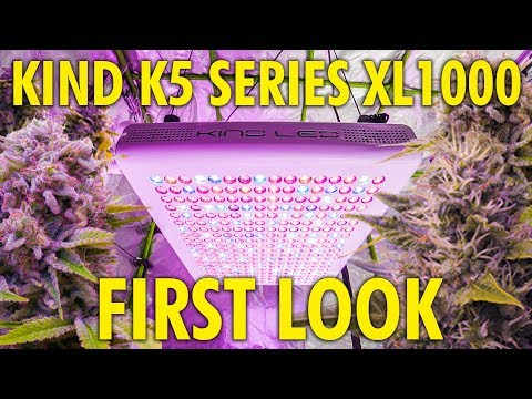 KIND XL1000 LED Grow Light Review and First Impressions