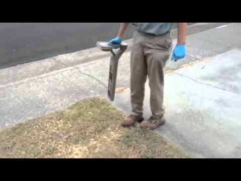 Finding the sewer main