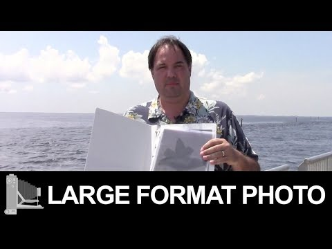 Channel Update & Hurricane Irma - Large Format Film Photography