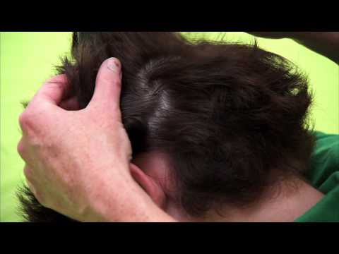 How to check a boys head for head lice