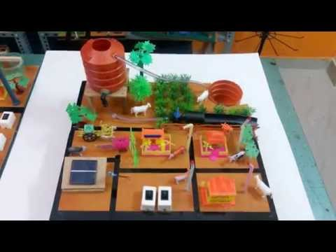School, Science working models and Project