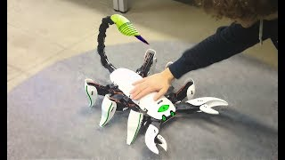 8 Coolest INSECT Robot Toys which Actually Exist