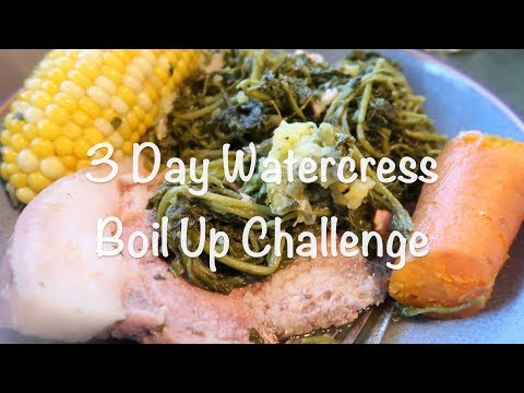 I Survived The 3 Day Watercress Boil Up Challenge