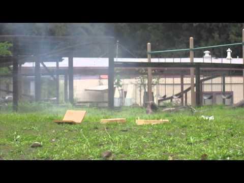 Mini M-80 vs. Plywood