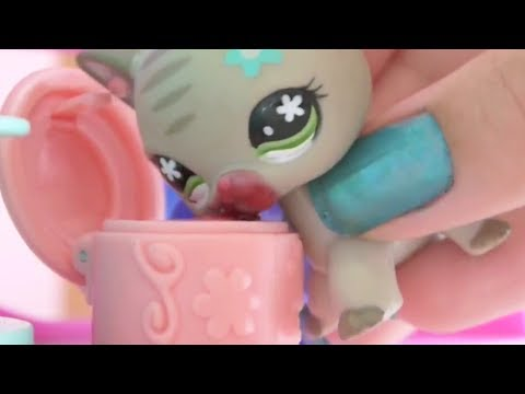 Littlest Pet Shop: Purfect (Episode #8 - Cakes And Competition)