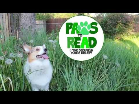 Paws to Read at Deerfield Library This Summer!