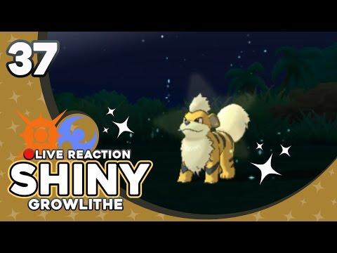 MY FAVORITE POKEMON! SHINY GROWLITHE! | Pokemon Sun and Moon Shiny Reaction #37 | CrimsonCBAD